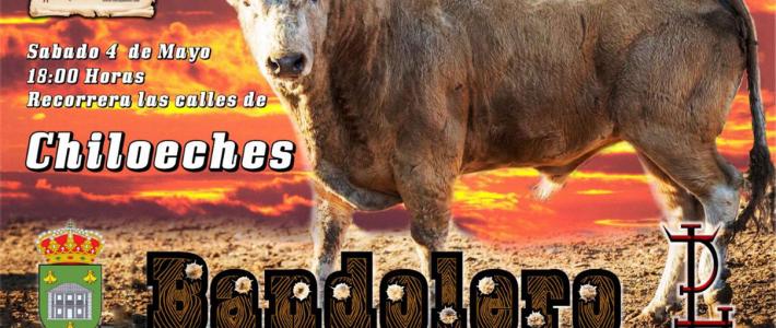 Vermu Solidario Fiestas San Marcos – Chiloeches